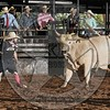 BULL FIGHTER-CBR-GD-2- (18)