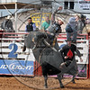 STERLING YANCEY-CPRA-SUN-POT-A- (57)