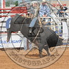 STERLING YANCEY-CPRA-SUN-POT-B- (37)