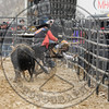 BULL FIGHTERS-IC-MBR-AR-A (336)