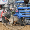 BULL FIGHTERS-IC-MBR-AR-B- (200)