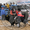 BULL FIGHTERS-IC-MBR-AR-B- (22)