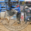 BULL FIGHTERS-IC-MBR-AR-B- (202)