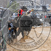 BULL FIGHTERS-IC-MBR-AR-B- (99)