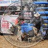 BULL FIGHTERS-IC-MBR-AR-B- (201)