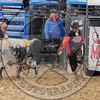 BULL FIGHTERS-IC-MBR-AR-B- (183)