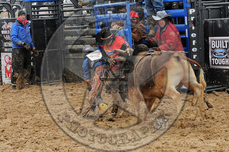BULL FIGHTERS-IC-MBR-AR-B- (242)