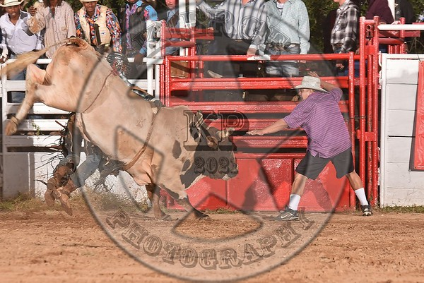 HELOTES BULL BLOWOUT 2015