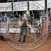 BREWSTER GUIN-PRCA-CL-TH- (83)