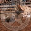 ROBERT ARRIAGE-BBB-RT-SA- (239)