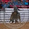 CASEY FARRINGTON-PRCA-BB-SA- (14)