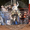 COLE HATFIELD-6 BLACK MARTINI-PRCA-HL-SA- (25)