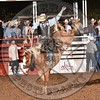 JAMES GREESON-Y10 TATOR TOT-PRCA-HL-SA- (50)