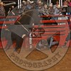 AARON PASS-114 MIDNIGHT BENDER-PRCA-HL-TH-RD2- (8)