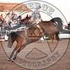 CODY ZIOBER-46 COOL WATER-PRCA-KL-FR- (53)