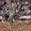 NAT STRATTON-157 MAGIC MOMENT-PRCA-KL-FR- (45)