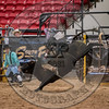 AARON WILLIAMS-PRCA-PM-LV-RD2- (229)