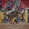 WYATT  BLOOM-PRCA-PM-LV-RD2- (60)