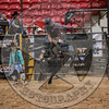 AARON WILLIAMS-PRCA-PM-LV-RD2- (232)