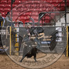 AARON WILLIAMS-PRCA-PM-LV-RD2- (234)