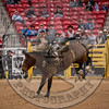 WYATT BLOOM-PRCA-PM-LV-RD1- (25)