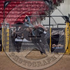 COLE PICTON-PRCA-PM-LV-RD1- (15)