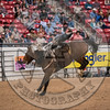 WYATT BLOOM-PRCA-PM-LV-RD1- (27)