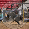 AARON WILLIAMS-PRCA-PM-LV-RD2- (230)