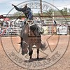 SPENCER WRIGHT-463 TIME OUT-PRCA-RW-SN- (205)