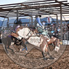 TANNER LOCKHART-652 PAINTED BEAR-PRCA-SF-SA- (73)