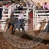 BULL FIGHTER-PRCA-SF-FR- (116)