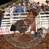 CHANNING MOORE-069 SPANISH MOSS-PRCA-SF-TH- (37)