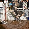 BULL FIGHTER-PRCA-SF-TH- (8)