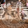 BULL FIGHTER-PRCA-SF-FR- (137)