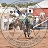 KYLE CHARLEY-820 BROWN SUGAR-PRCA-SF-WD- (89)