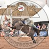 KYLE CHARLEY-820 BROWN SUGAR-PRCA-SF-WD- (93)