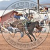 KYLE CHARLEY-820 BROWN SUGAR-PRCA-SF-WD- (90)