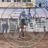 TANNER LOCKHART-652 PAINTED BEAR-PRCA-SF-SA- (71)