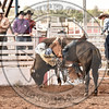 CHRIS BECHTHOLD-2124 PARADISE FOR CHICKENS-PRCA-SF-WD- (110)