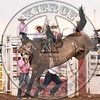 BUCK LUNAK-D38 DUSTY VALLEY-PRCA-SF-FR- (37)