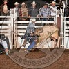 BULL FIGHTER-PRCA-SF-TH- (43)