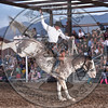 JOSH DAVISON-804 APPLE JUICE-PRCA-SF-SA- (60)