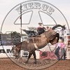 BUCK LUNAK-D38 DUSTY VALLEY-PRCA-SF-FR- (42)