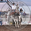 JOSH DAVISON-804 APPLE JUICE-PRCA-SF-SA- (58)