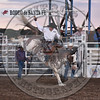 JOSH DAVISON-804 APPLE JUICE-PRCA-SF-SA- (57)