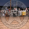 KYLE ROBERT & TJ BROWN-PRCA-SF-FR- (30)