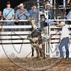 CASEY HAYNES-72 BLACK LIGHT-PRCA-SF-SA- (54)
