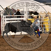 BULL FIGHTER-PRCA-SF-TH- (106)