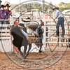 CHRIS BECHTHOLD-2124 PARADISE FOR CHICKENS-PRCA-SF-WD- (111)