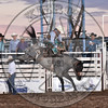 PETER WHITE-H106 BLUE SWAN-PRCA-SF-SA- (76)